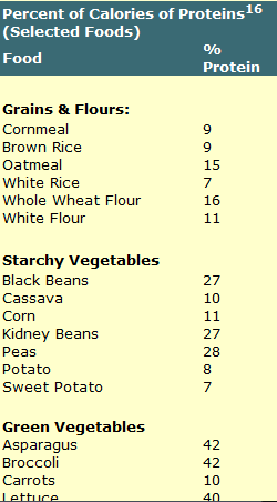 calories from protein vegetables