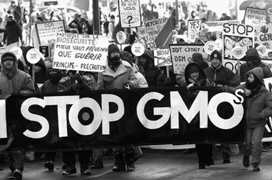 gmo protests