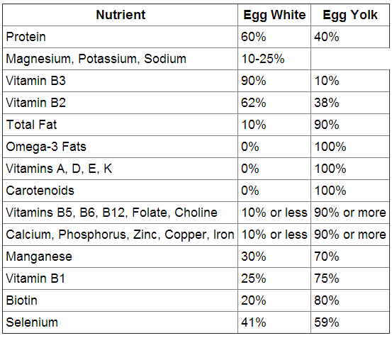 egg whites vs egg yolks