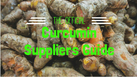 curcumin suppliers guide